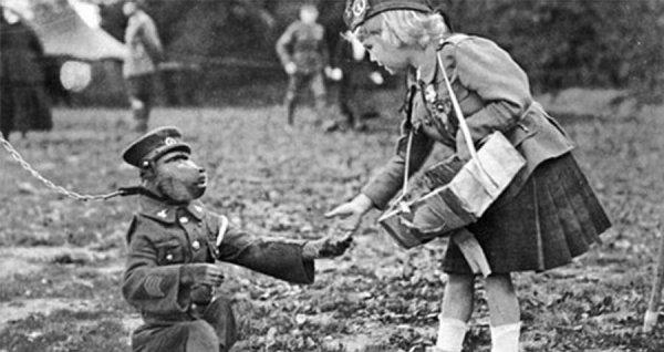 I. Dünya Savaşı hendeklerinde savaşan maymun #4