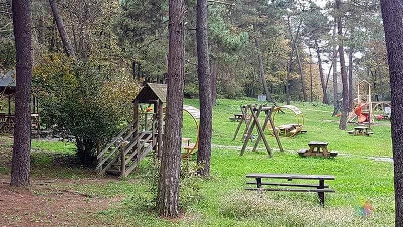 Sakarya il Ormanı Tabiat Parkı Sapanca'da yapılacak şeyler